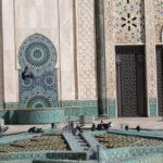 Mal di Marocco